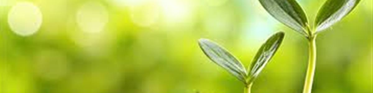 Sustentabilidade Ambiental do Agronegócio